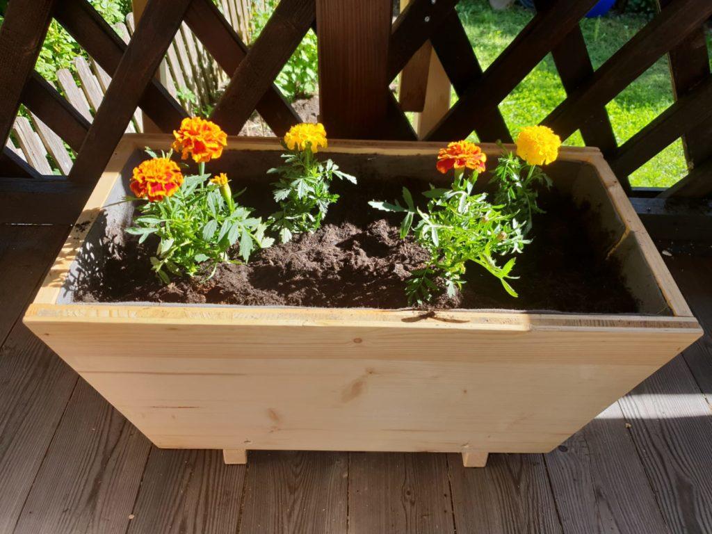 Blumenkasten für die Gartengestaltung in Tirol mit Blumen